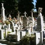 Гробището в Палермо
