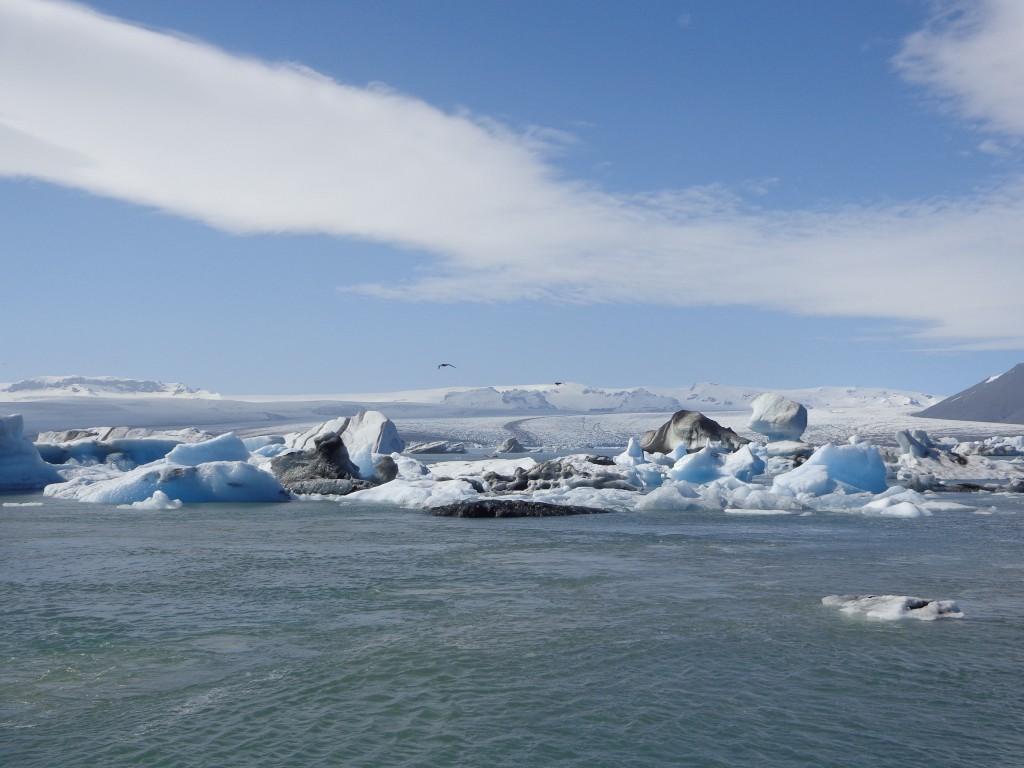 В ледената лагуна Йокулсарлон