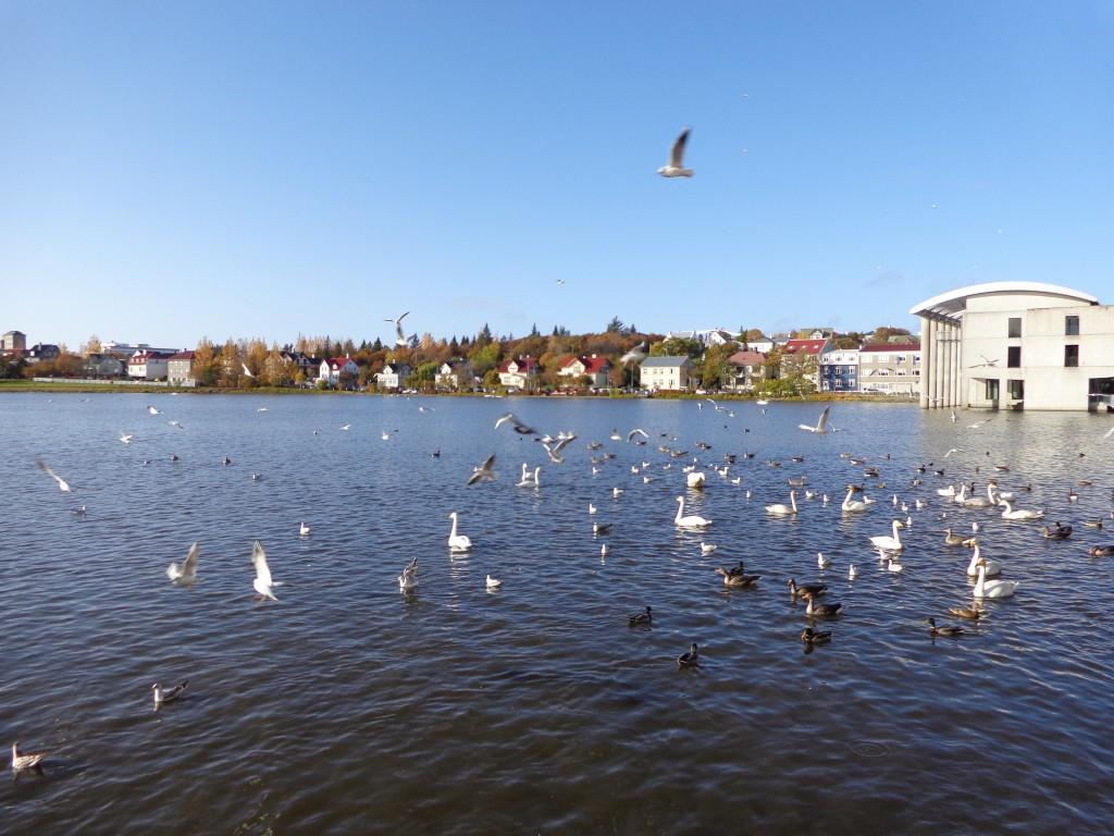Езерото Тьорнин