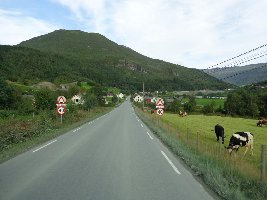 Пасторална норвежка идилия