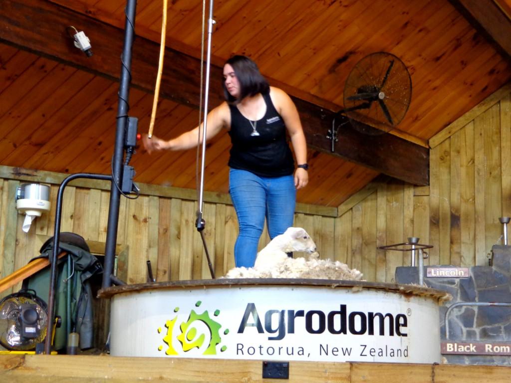 """Нова Зеландия, ферма """"Агродом"""""""