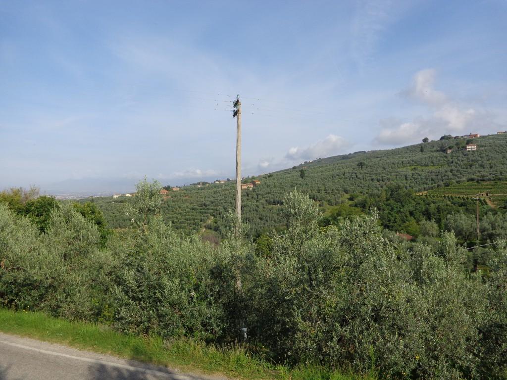Гледка от родната къща на Леонардо към планината Монталбано