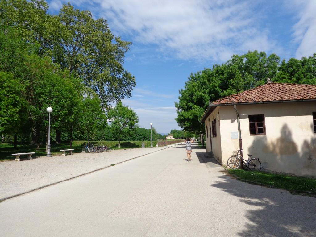 Велосипедна алея в град Лука