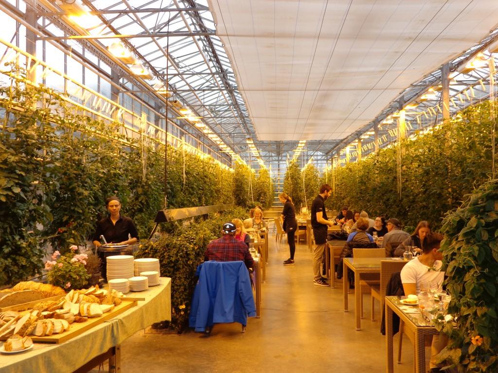 """Фермата за домати """"Фридхаймар"""" ежедневно произвежда по 1 тон домати"""