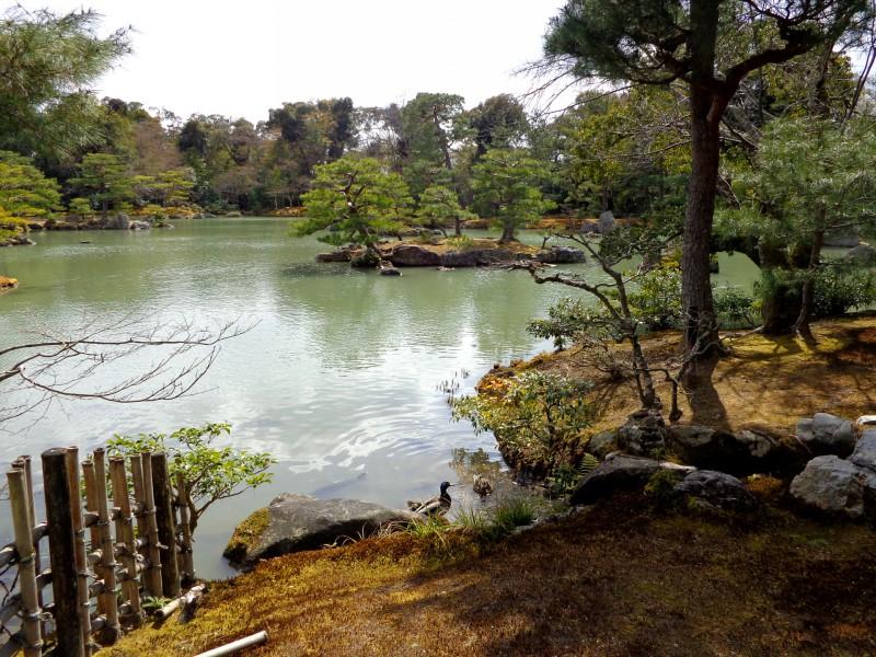 Киото - японците са всепризнати майстори в изграждането на градини