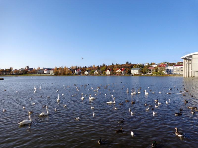 Езерото Тьорнин с модерното кметство на града