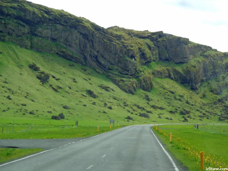 Исландско зелено - 11