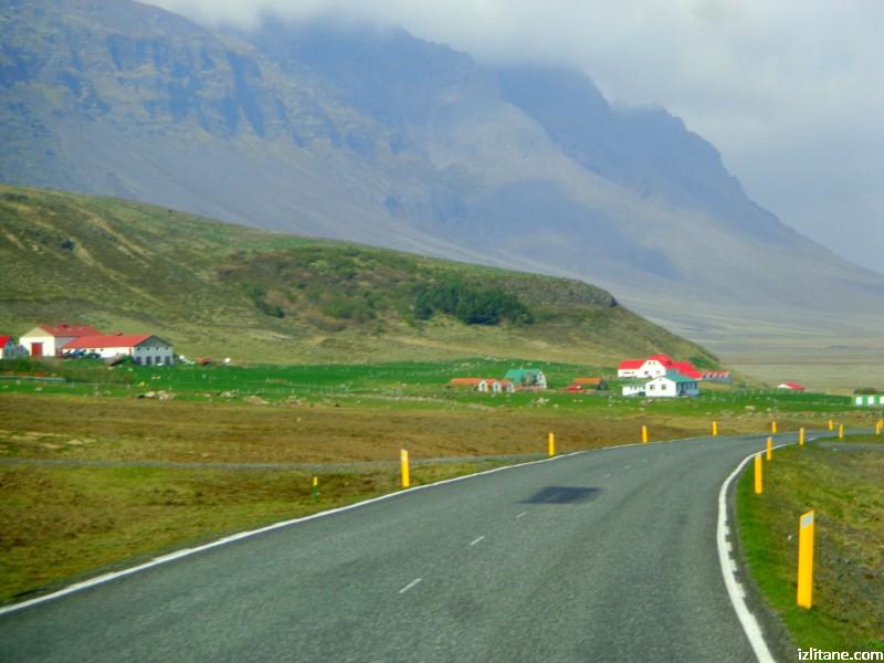 Исландско зелено - 12