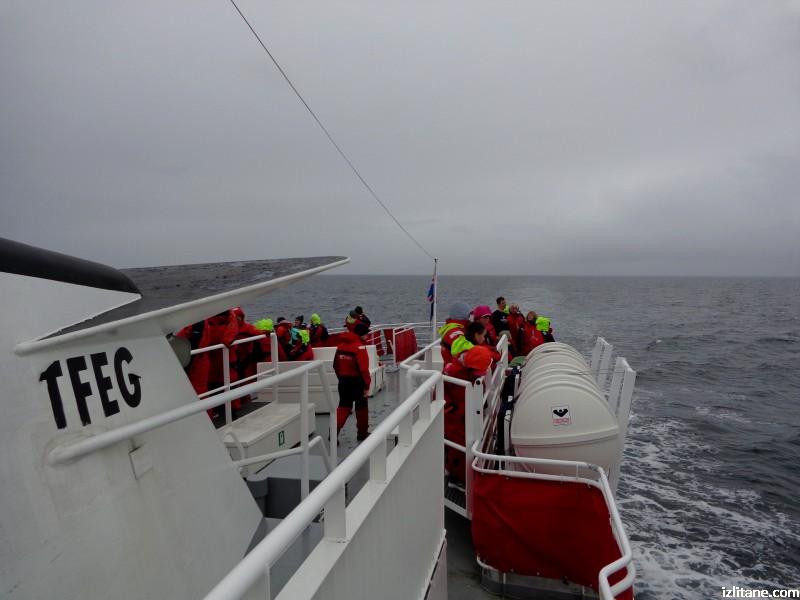 Наблюдение на китове